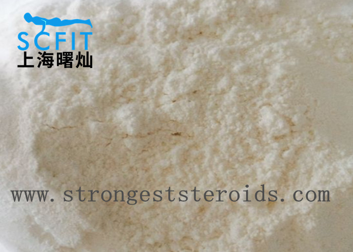 Raw Steroid Powder Deca 19-Nortestoterone Decanoate With  Injection For Body builders